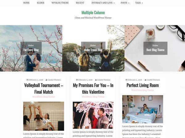 Gist Pro WordPress Theme