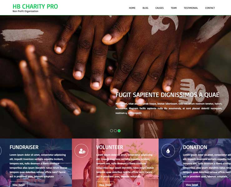 HB Charity – WordPress Theme